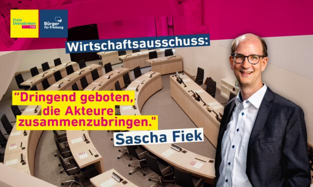 Redebeitrag: Sascha Fiek zum Wirtschaftsausschuss